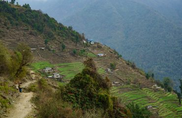 Trekking trail to Poon Hill