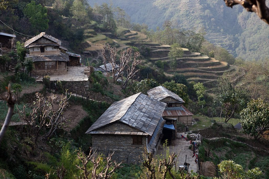 Ghandruk gouses by Greg Willis